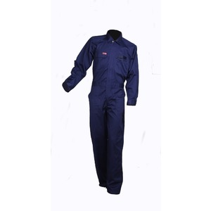 Product_3.0434_overall_total_safe_1_210gm_blue